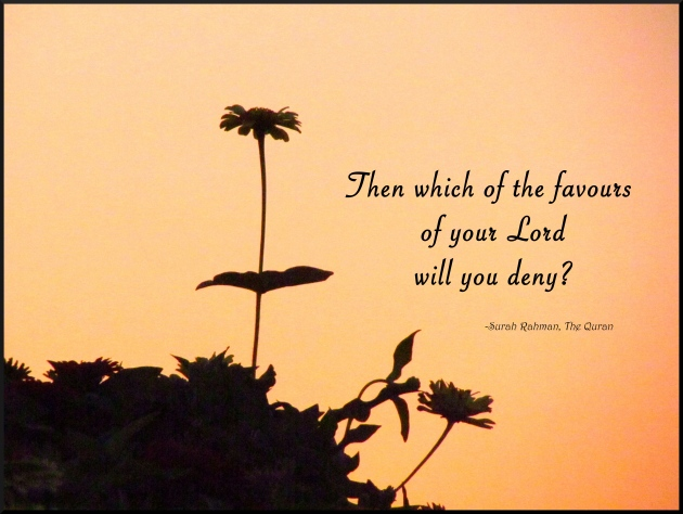 favours of your lord