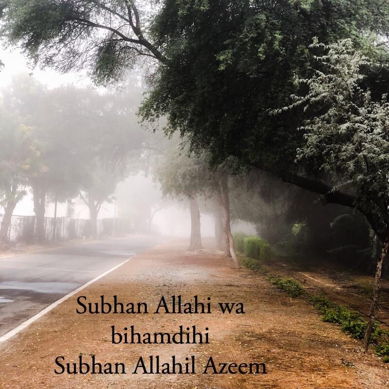 Subhan Allahi wa bi Hamdihi Subhan Allahil Azeem